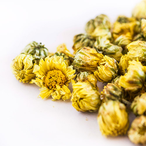 Chrysanthemum Flower Tisane