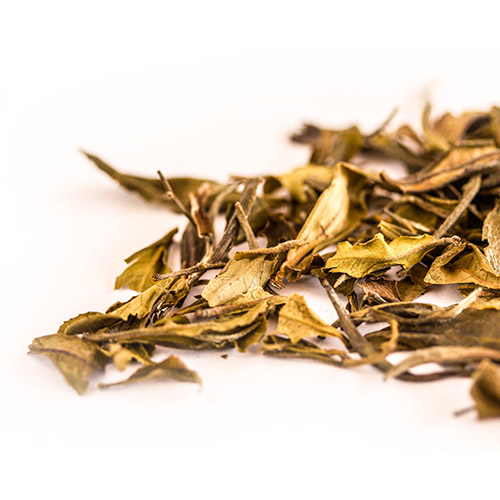 Darjeeling White Leaf QUIET-MOMENT Tea